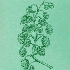 Hops Vine Green Triblend Tee